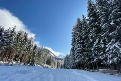 berwang_winter_ferienhaus_berwang_neunzehn
