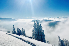 skitour_berwang